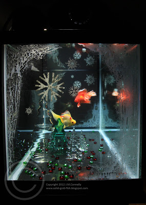 My Christmas-themed Aquarium