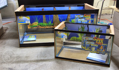 Petco's Dollar per Gallon Sale is on!