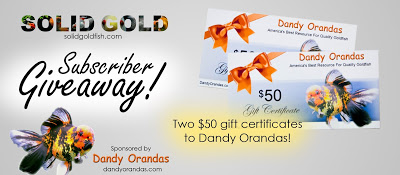 Dandy Orandas Giveaway Announcement!